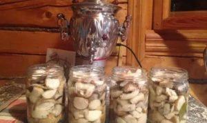Маринование грибов рядовок на зиму