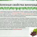 Гвоздика турецкая травянистые растения для открытого грунта