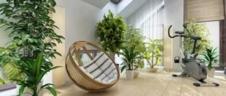 Роль растений в интерьере дома