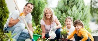 Семья на даче фото