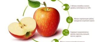 Яблоко полезные свойства витамины