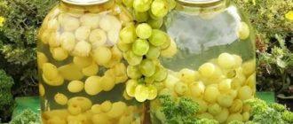 Что сделать из белого винограда